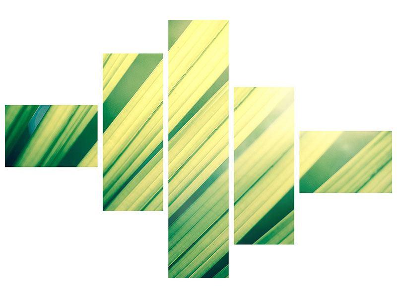 Acrylglasbild 5-teilig modern Beleuchtetes Palmblatt