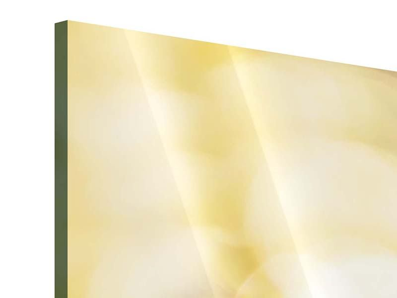 Acrylglasbild 9-teilig Das Licht der Sonnenblumen