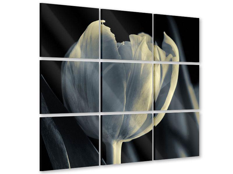 Acrylglasbild 9-teilig Schwarzweissfotografie XXL Tulpe