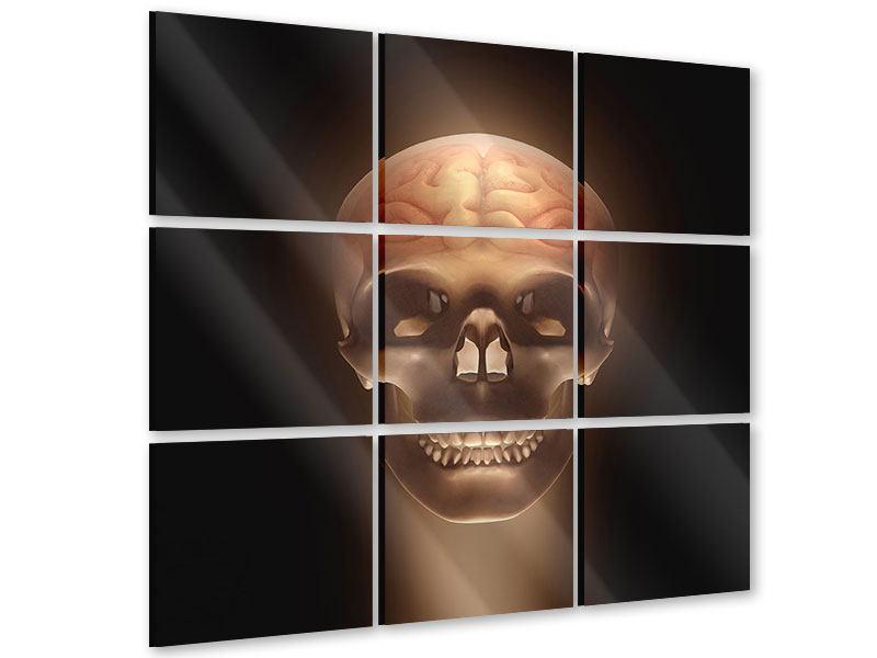Acrylglasbild 9-teilig Schädel