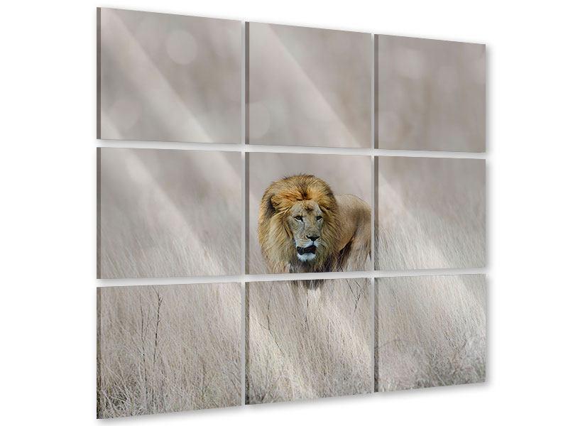 Acrylglasbild 9-teilig Der Löwe