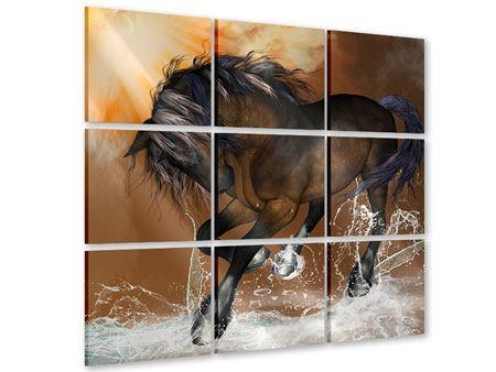 Acrylglasbild 9-teilig Black Beauty