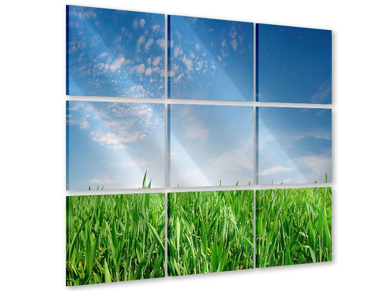 Acrylglasbild 9-teilig Das Gras