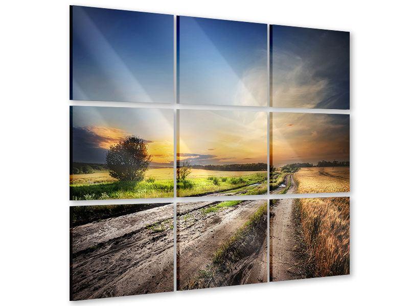 Acrylglasbild 9-teilig Sonnenaufgang am Feld