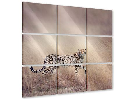 Acrylglasbild 9-teilig Gepard