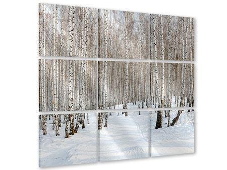 Acrylglasbild 9-teilig Birkenwald-Spuren im Schnee