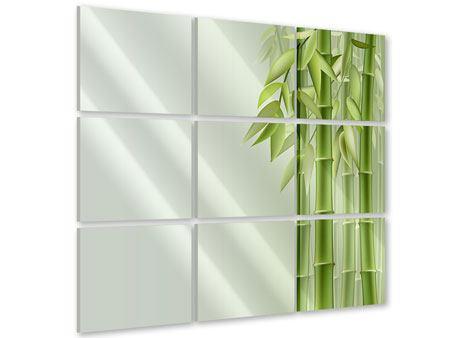 Acrylglasbild 9-teilig Bambuswall