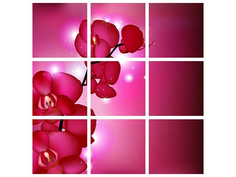 Acrylglasbild 9-teilig Orchideenmärchen