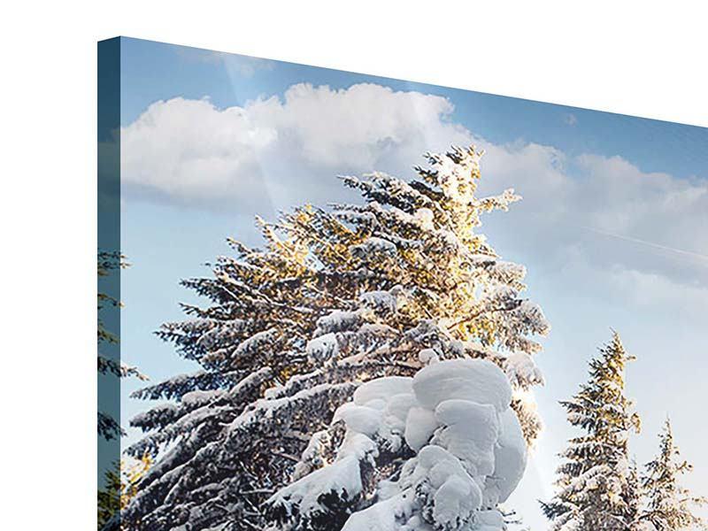 Acrylglasbild 9-teilig Tannen im Schnee