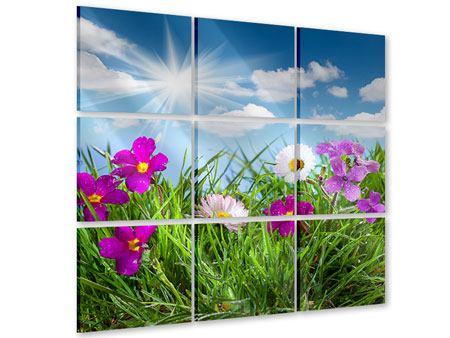 Acrylglasbild 9-teilig Blumenwiese