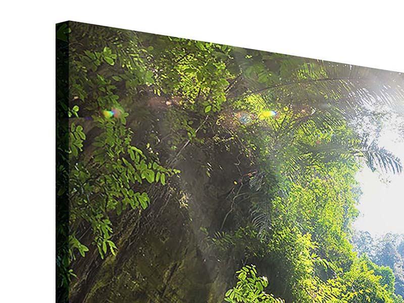 Acrylglasbild 9-teilig Lichtung im Dschungel