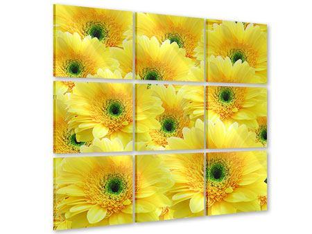 Acrylglasbild 9-teilig Flower Power Blumen