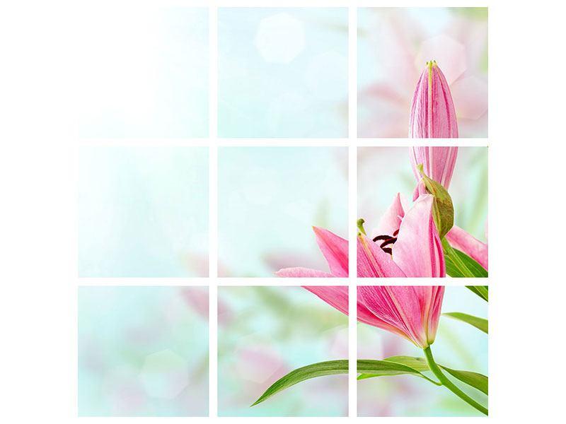 Acrylglasbild 9-teilig Romantische Lilien