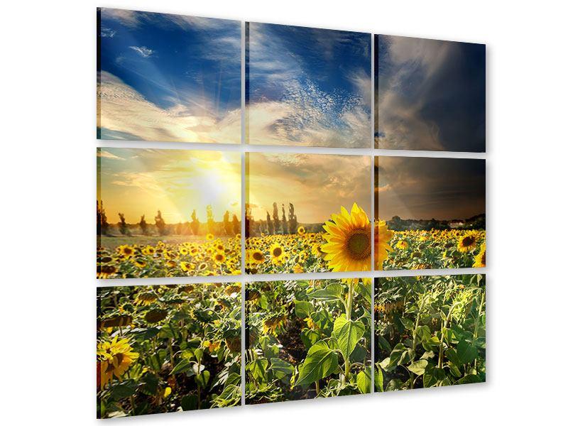 Acrylglasbild 9-teilig Sunny Flowers