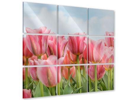 Acrylglasbild 9-teilig Zarte Tulpen