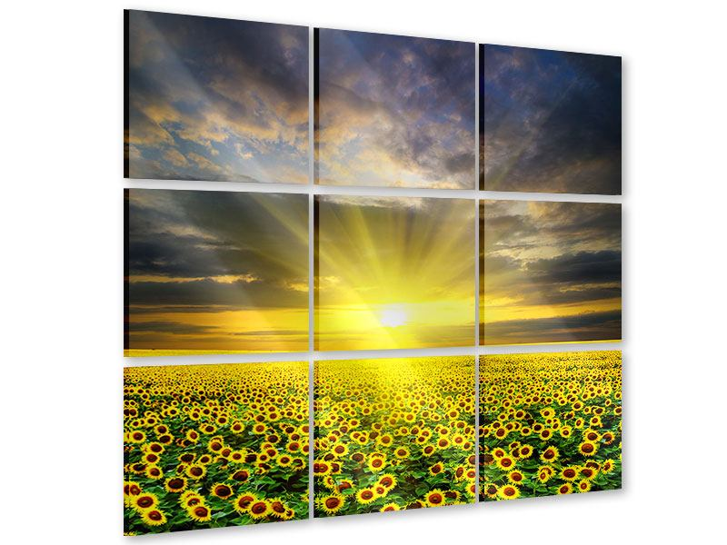 Acrylglasbild 9-teilig Abenddämmerung bei den Sonnenblumen