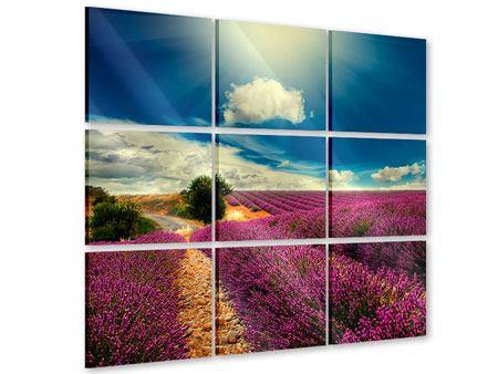 Acrylglasbild 9-teilig Das Lavendeltal