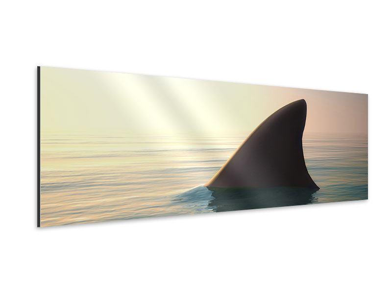 Aluminiumbild Panorama Haifischflosse
