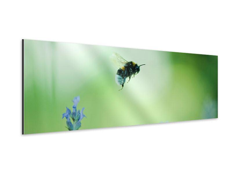 Aluminiumbild Panorama Die Biene