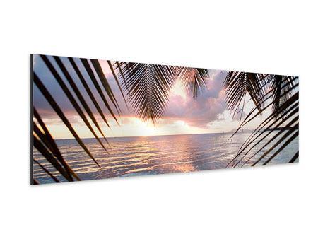 Aluminiumbild Panorama Unter Palmenblätter