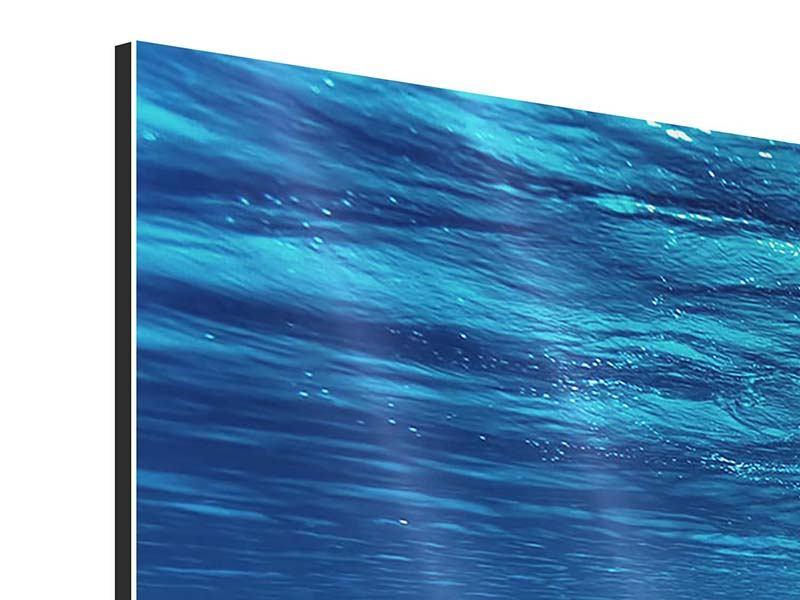 Aluminiumbild Panorama Schönheit unter Wasser