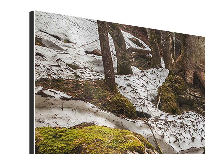 Aluminiumbild Panorama Herabstürzender Bach