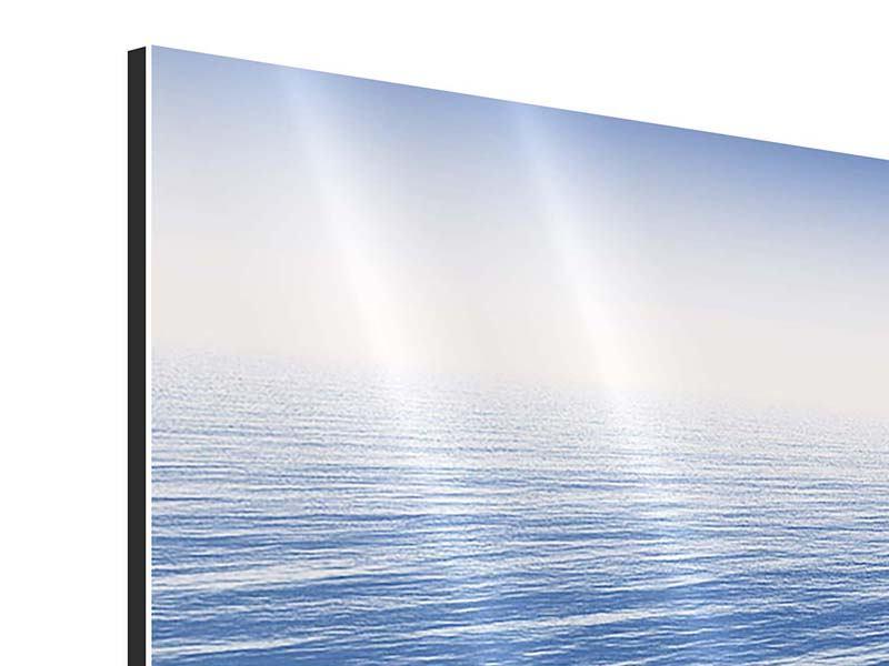 Aluminiumbild Panorama Der Adler