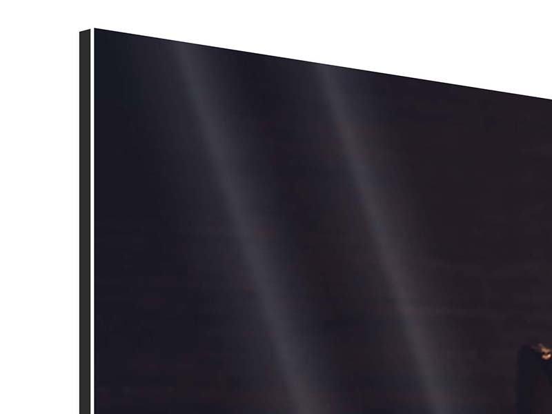 Aluminiumbild Panorama Ein Glas Cognac