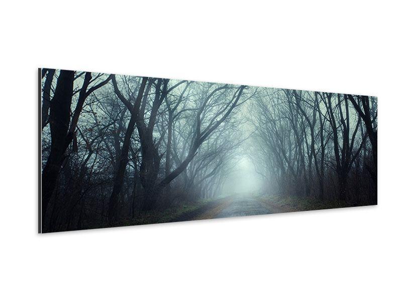 Aluminiumbild Panorama Nebelwald