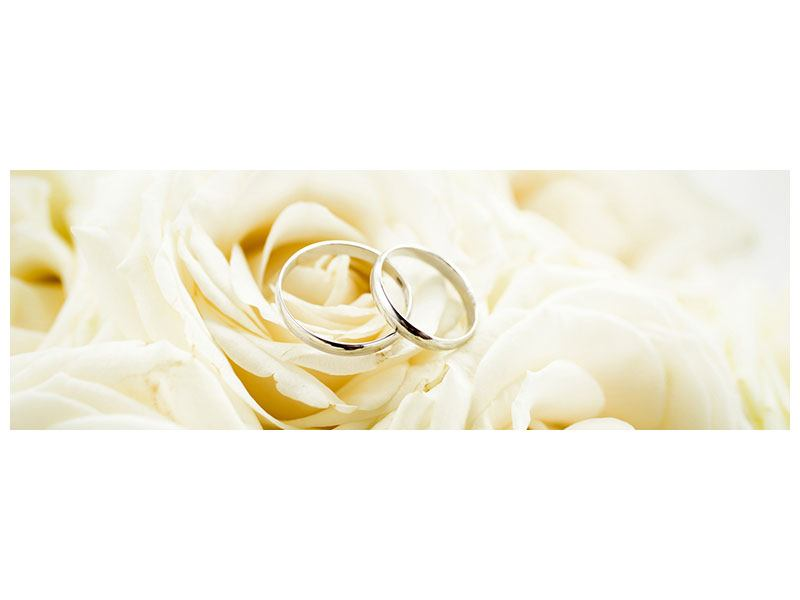 Aluminiumbild Panorama Trauringe auf Rosen gebettet