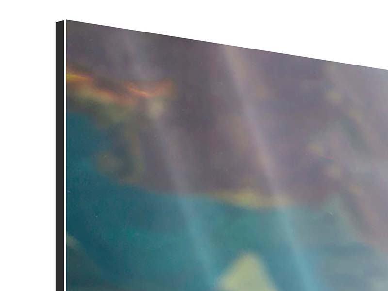 Aluminiumbild Panorama Hai