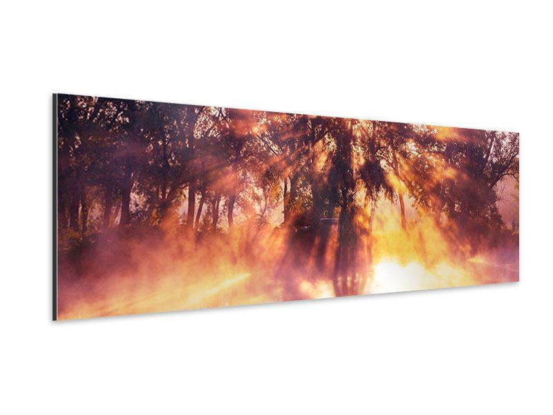 Aluminiumbild Panorama Die Waldspiegelung