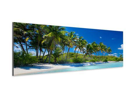 Aluminiumbild Panorama Standpalmen