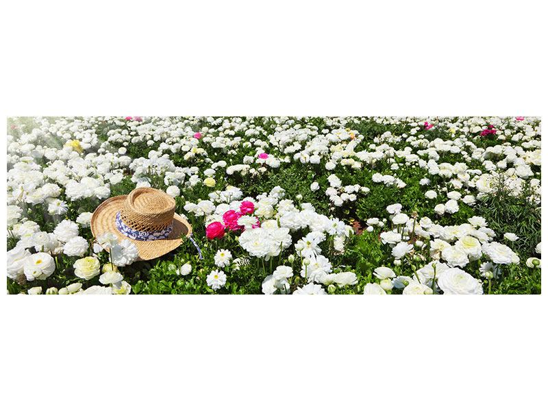 Aluminiumbild Panorama Die Frühlingsblumenwiese
