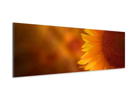 Aluminiumbild Panorama Macro-Sonnenblume