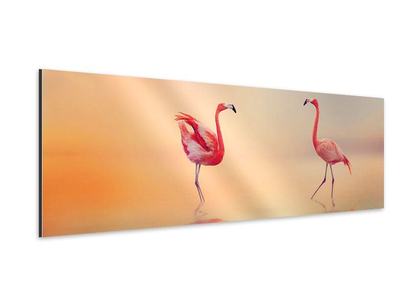 Aluminiumbild Panorama Romantische Flamingos