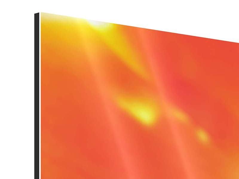 Aluminiumbild Panorama Die Narbe einer Tulpe XXL