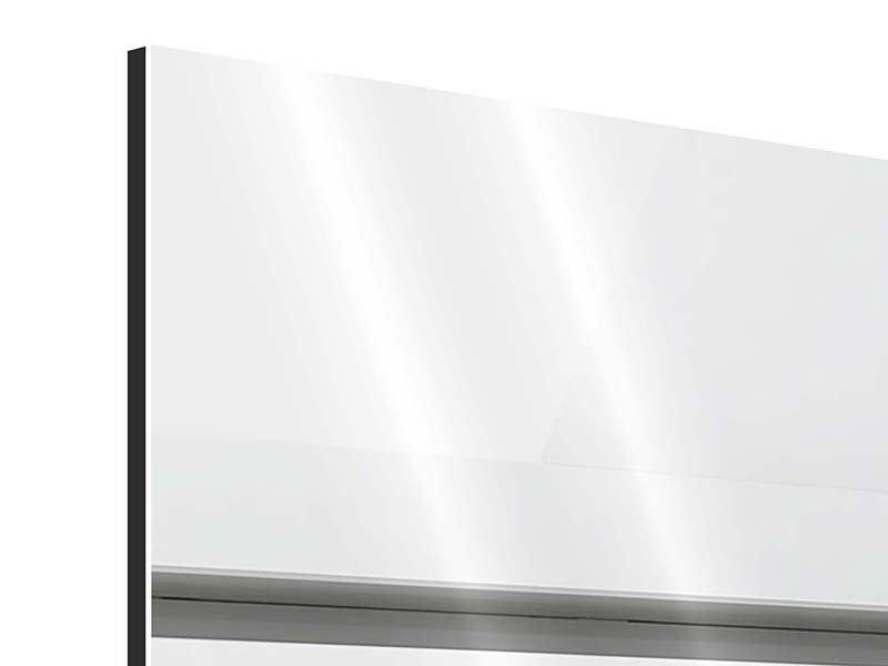 Aluminiumbild Panorama Weisser Flügel