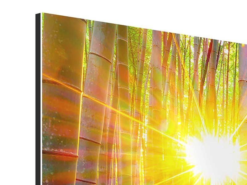 Aluminiumbild Panorama Bambusse