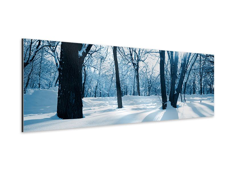 Aluminiumbild Panorama Der Wald ohne Spuren im Schnee