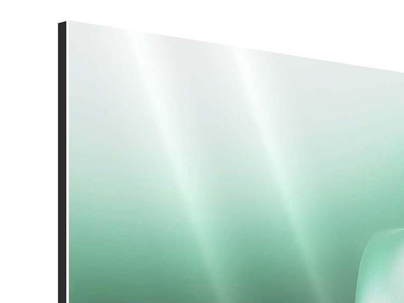 Aluminiumbild Panorama Abstrakt Tuchfühlung