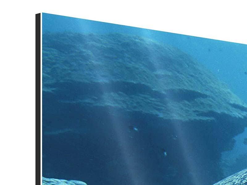 Aluminiumbild Panorama Die Meeresschildkröte