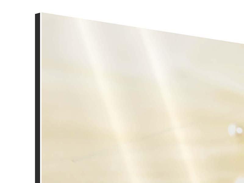 Aluminiumbild Panorama Trauringe