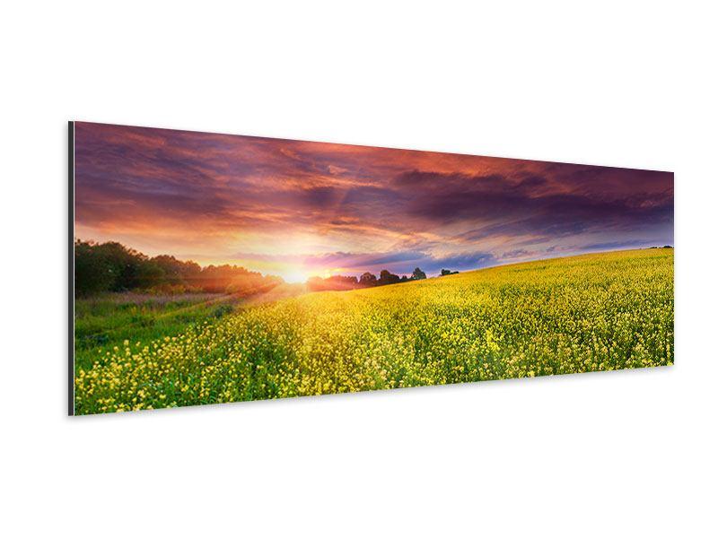Aluminiumbild Panorama Abenddämmerung