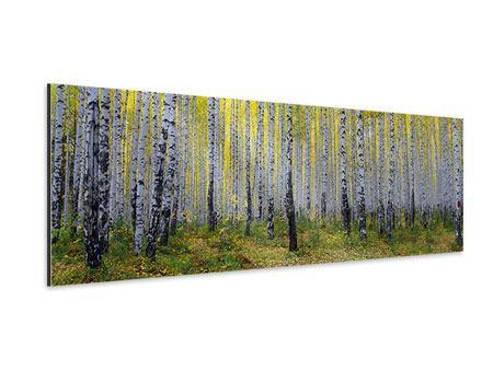 Aluminiumbild Panorama Herbstlicher Birkenwald