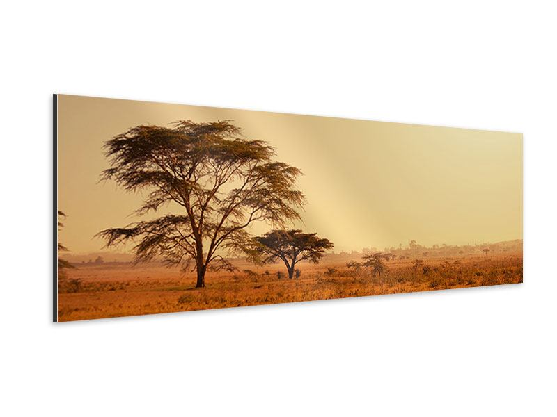 Aluminiumbild Panorama Weideland in Kenia