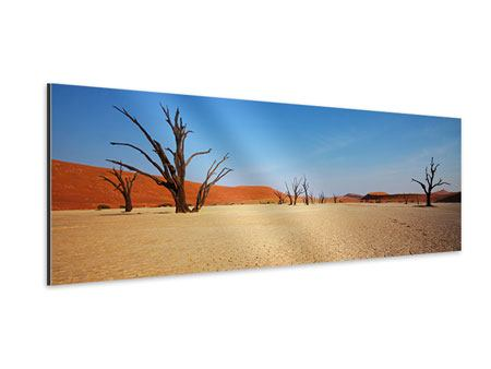 Aluminiumbild Panorama Wüste
