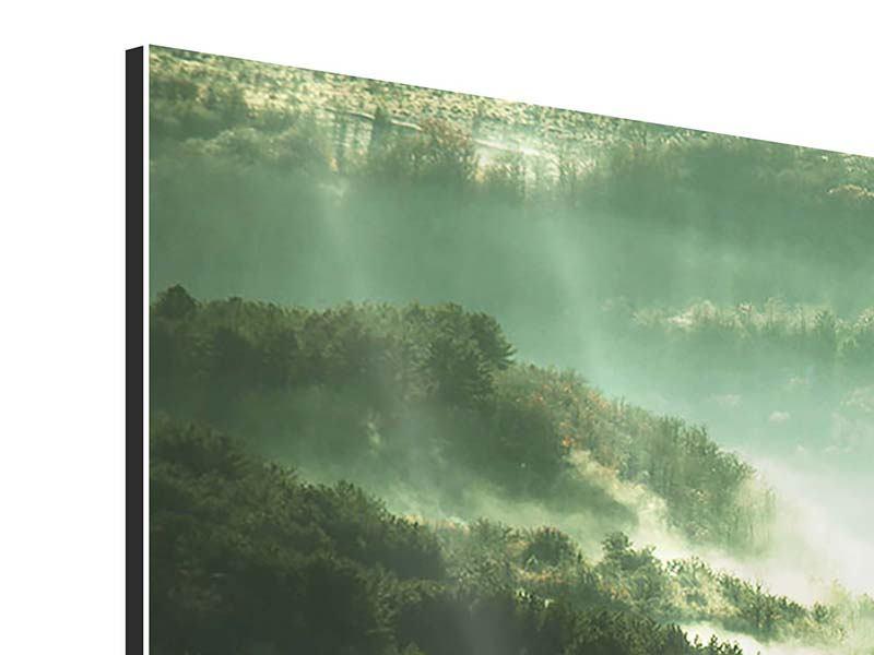 Aluminiumbild Panorama Über den Wäldern