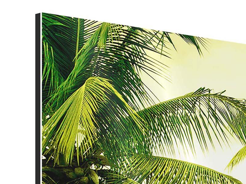Aluminiumbild Panorama Reif für die Insel