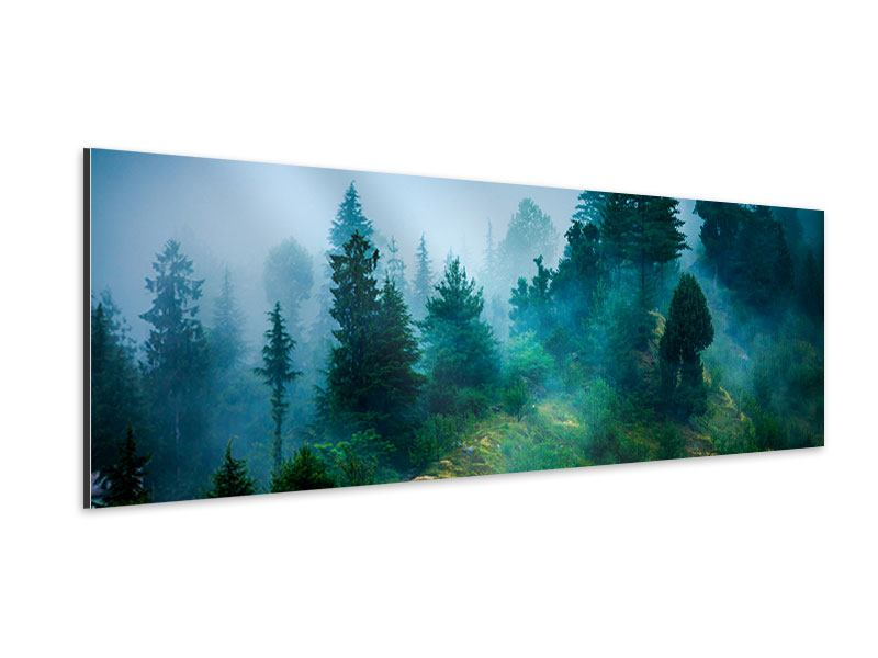 Aluminiumbild Panorama Geheimnisvoller Wald